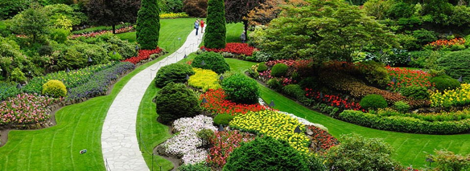Ideal-Landscaping